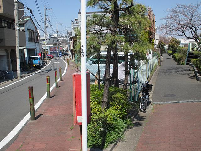 羽田弁天橋の桜