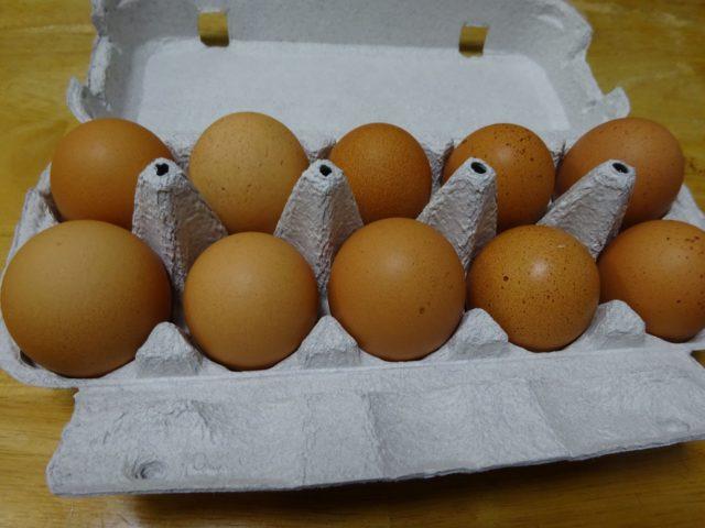 ときわの卵