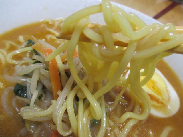 行列のできるラーメンこってり味噌(日清食品)は炒め味噌と豚骨に背脂のうまみをきかせた濃厚スープに太麺絡む本格派