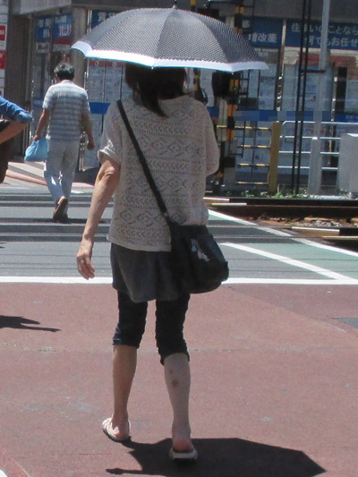 別の色を配してある日傘